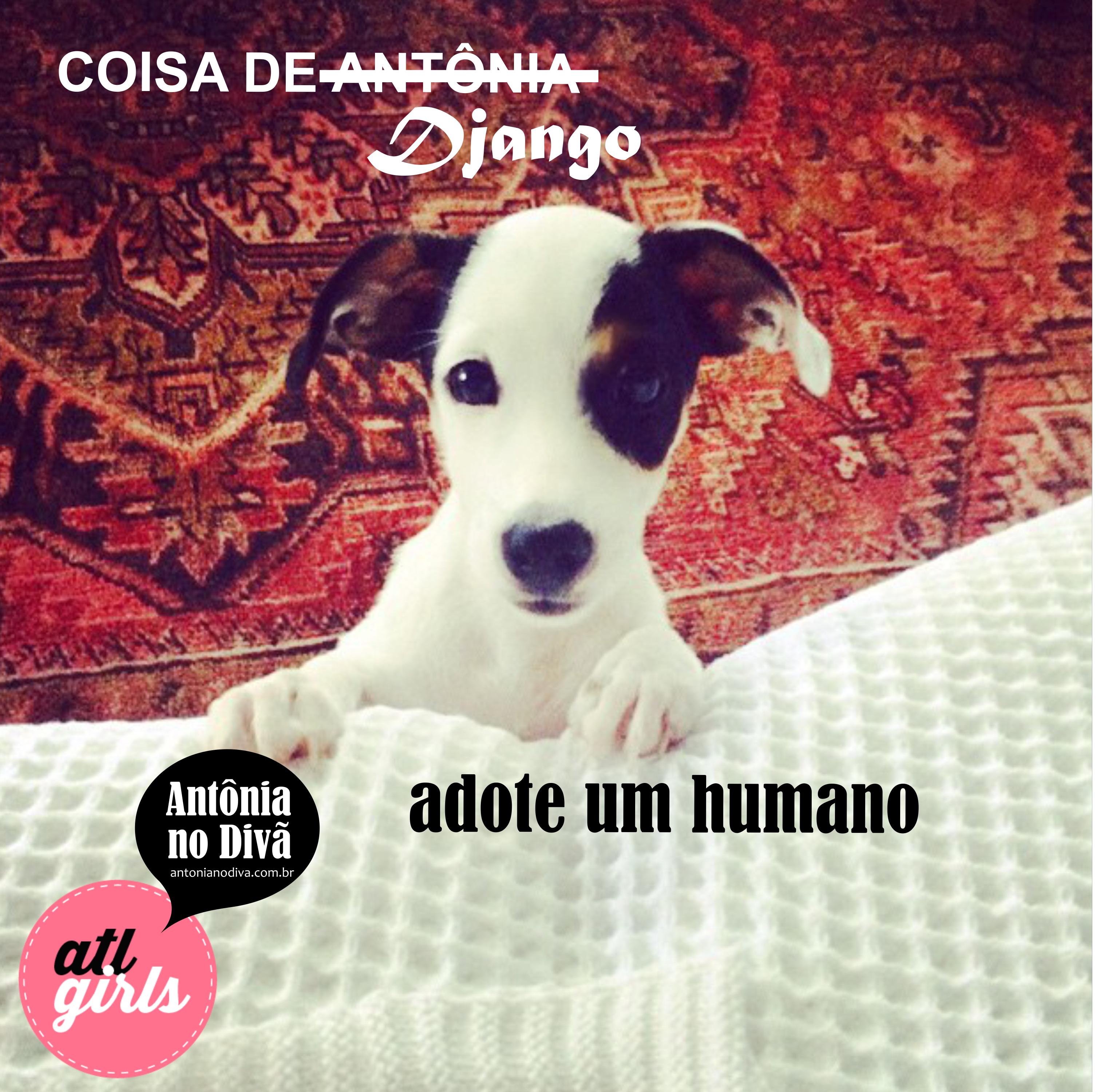 antônia no divã - adote um humano
